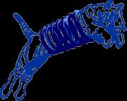 Логотип ЧП «Полонез-Авто»